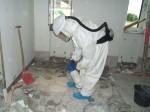 Schimmelpilzsanierung, persöhnliche Schutzmaßnahmen, Gutachten Bauüberwachung, 935