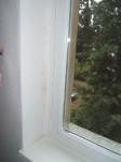 Schimmelpilze an Fensterleibung, Gutachten, 951