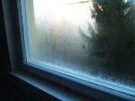 Tauwasserausfall am Kastenfenster, Schadensgutachten, 1009